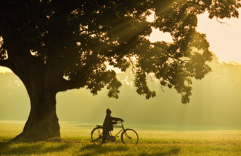 The Boy & Bicycle